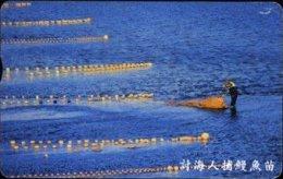 Taiwan Telephone IC Card IC09C003 Fishing Ocean Scenery - Taiwan (Formosa)