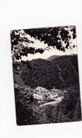 C-3287 - Cartolina Passo Del Cansiglio (Crosetto) M.1152m. - Albergo Ristorante Bar - Hotel's & Restaurants