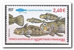 TAAF 2014 MNH Postfris, Fish - Terre Australi E Antartiche Francesi (TAAF)
