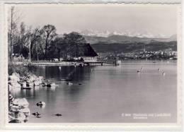 ZÜRICHHORN - Fischstube Vom Landidörfli - ZH Zurich