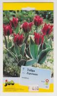 (RE 02) Card Tulip Esperanto - Esperanto