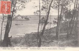 29 CARANTEC - Les Bois De Sapins. - Carantec