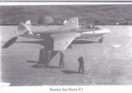 Hawker Sea Hawk F 1 1951 Aircraft Postcard (AM2095) - 1946-....: Ere Moderne
