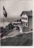 ZUG, ZUGERBERG - Hotel - Restaurant - Grosse Sonnentterasse - ZG Zoug