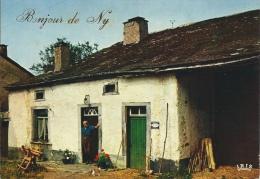 Ny - Bonjour De … - Maison Typique Ardennaise Et Son Occupant - Hotton