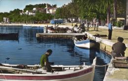 VAR 83 BANDOL Le Port Et Ses Pêcheurs Années 58 - Bandol