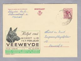 MOTIV HUNDE 1969-01-16 VEEWEYDE Werbe Ganzsache - Enteros Postales