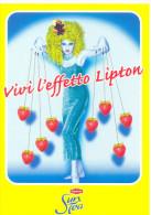 PROMOCARD N°  1355  SUN TEA LIPTON - Pubblicitari