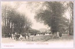 COURTENAY , Le Mail , Champ De Foire  . - Courtenay