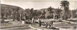 DZ - Scènes Et Types - Un Puits Et Palmeraie - CPSM Grand Format - éd. Photo Africaines / Epa N° 6003 (écrite, 1961) - Algérie
