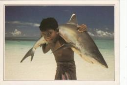 MALDIVES - Jeune Garçon Et Un Requin - Maldives