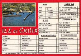 Ao - CPM ILE De GROIX - Groix