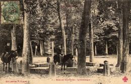 Bois De Verrières: L´Obélisque. - France