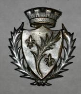 Insigne Civil De La Ville De Cannes 06 Laiton Nickelé - Militari