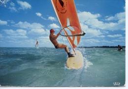 Windsurf (theojac) Sports Nautiques Surf - Postcards