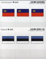 2x3 In Farbe Flaggen-Sticker Liechtenstein+Estland 4€ Kennzeichnung Alben Karten Sammlung LINDNER 640+645 Flags FL Eesti - Klasseerkaarten