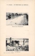 SYRIE.   A TRAVERS LA BEKAA.  CONVOI DE CHAMEAUX.  LE LABOUR.  ANIMATION. - Siria