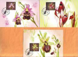 Croatia 2014 Y Max. Cards Flora Orchids Postmark  Zagreb 11.04. - Croacia