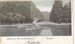 B81106 Wien Schonbrunn Orangerie Austria Front/back Image - Château De Schönbrunn