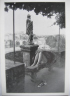 Photographe Dieuzaide Albi Jardin Musée 1984 - Illustrateurs & Photographes