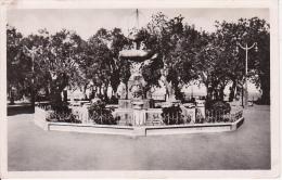 CPA Cherchell - Place Romaine - Le Jet D'Eau (3119) - Algerien