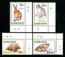 BARBADOS 1989** - Wildlife Preservation - 4 Val MNH (set Completo) Come Da Scansione - Barbados (1966-...)