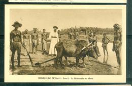 Missions De Ceylan - Série II - Le Missionnaire Au Labour - Lwh165 - Sri Lanka (Ceylon)