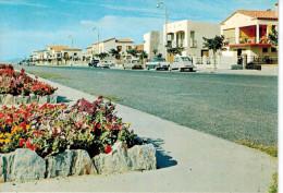 CPSM NARBONNE-PLAGE (11): Boulevard Du Front De Mer (2 CV, DS...) - Narbonne