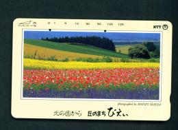 JAPAN - Used Magnetic Phonecard (431-110) As Scan - Japan
