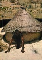 TOGO DEMEURE TATA MANGO - Togo