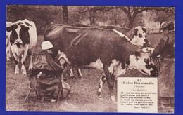 é134  ) 3)  Traite Des Vaches  La Laitiere  Normandie 1937   = Très Très Bon ETAT= - Elevage