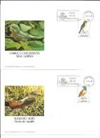 TARJETON ESPAÑA 200x140 M/m - Cuckoos & Turacos