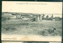 N°440  -  PASSAY Un Coin Du LAC De GRAND LIEU  -2 Angles Avec Froissure + Tache, Mais Inédite Ainsi- Lak54 - Sonstige Gemeinden