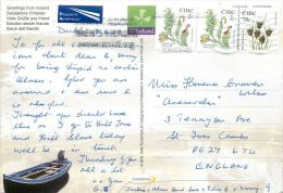 Country Scene Ireland Postcard Used Posted To UK 2009 Nice Stamp - Other