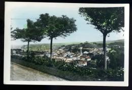 Cpsm  Espagne Comillas Vista General Vue Générale General View  AVR2 - Cantabria (Santander)