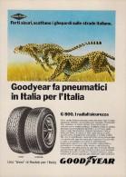 # GOODYEAR G800 1970s Car Tires Italy Advert Pub Pubblicità Reklame Pneumatici Pneus Reifen Neumaticos - Transportation
