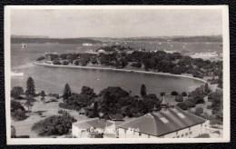 SYDNEY - FARM COVE   - MURRAY VIEWS - OLD PHOTOCARD - Adelaide