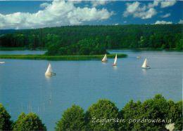 Lake, Poland Postcard Used Posted To UK 2011 Stamp - Poland