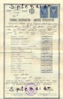 Revenue-Tax Stamp-diplome-YUGOSLAVIA-1933 - 1931-1941 Kingdom Of Yugoslavia