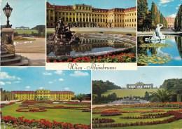 P4445 Schonbrunn  Wien Austria Front/back Image - Château De Schönbrunn