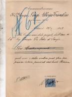 1915  FATTURA MILANO - PRINCIPE LUIGI ALMERICO - Italia