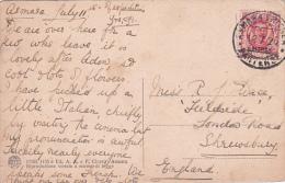 Eritrea 1926 Carolina Postale Usata - Eritrea