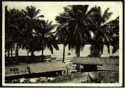 Lambarene / Gabun  -  Blick über Die Krankenhütten Hinweg Zum Fluß Ogowe  -  Ansichtskarte Ca.1956  ( 2995) - Gabun