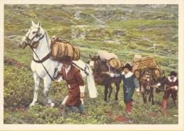 Postvervoer Zwitserland - 400 Jaar Zwitsers Vervoer - 17. Jahrhundert Saumkolonne - R1 - Ongebruikt - Post