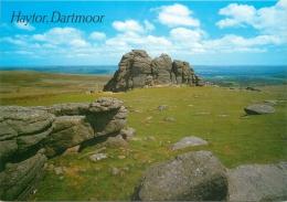 Haytor, Dartmoor, Devon, England Postcard Salmon - Altri