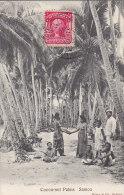 Océanie -  / Samoa / Cocoa-nut Palms /  Nu Nude / Postal Mark Pago Pago 1906 - Samoa