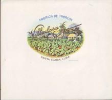 T46 CUBA TOBACCO OLD LEBEL Circa 1920 VILLACLARA SPORT - Labels