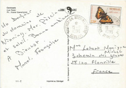 Senegal 1996 Guichet An Soumbedioune Aglais Butterfly Insect Cover - Vlinders