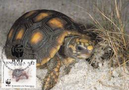 WWF - 128,32 - CM-MC - € 1,06 - 12-6-1992 - Bs.12 - Red-footed Tort.&River Turtle - Venezuela 1121212 - W.W.F.