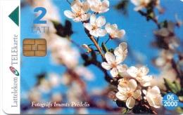 LATVIA PHONECARD SPRING FLOWERS   4/99,D-024-200000pcs-US E D - Latvia